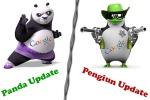 تفاوت الگوریتم های گوگل پاندا و گوگل پنگوئن و گوگل مرغ مگس خوار